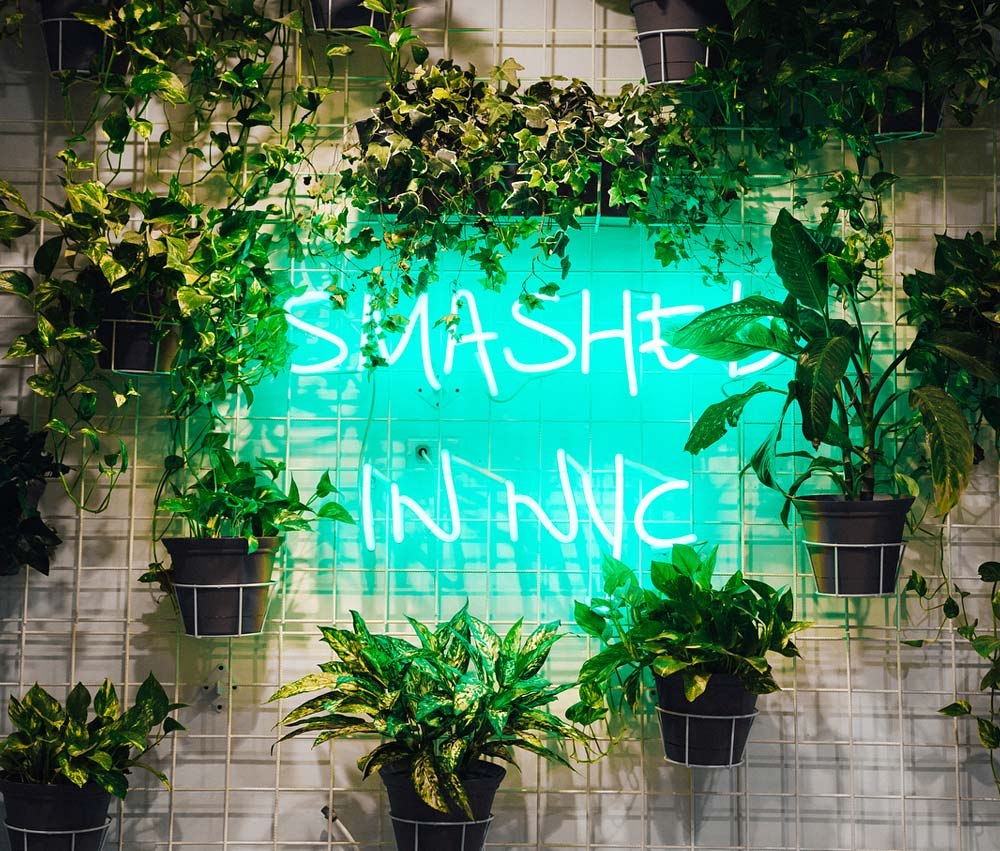 Image of a neon sign saying 'Smashed in NYC'